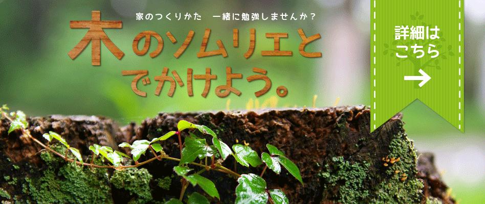 木のソムリエツアー