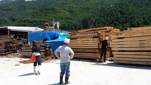 第2回木のソムリエツアー